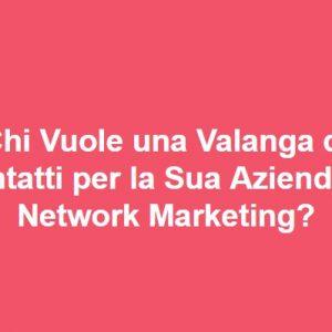 lead generation network marketing